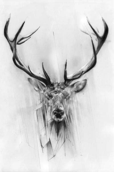 Red Deer Canvas Wall Art by Alexis Marcou | iCanvas