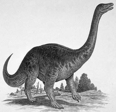 Time - Dinosaurs from the Late Triassic period | Natural