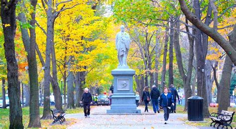 Boston Fall Foliage - 10 Best Places to See It - Boston