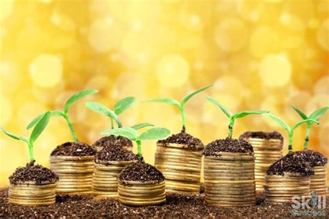 A Practical Guide To Wealth Creation - Skill Success