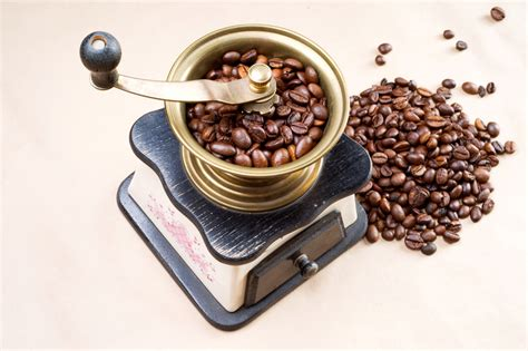 Word of the Day: grind – WordReference Word of the Day
