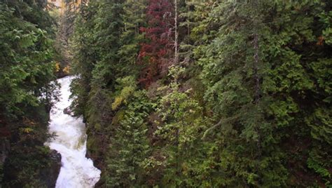 Twin Falls in Lynn Canyon | Vancouver Trails