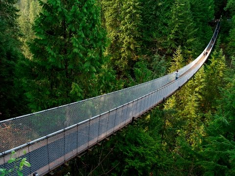 Vancouver's Sea to Sky Gondola: The Complete Guide